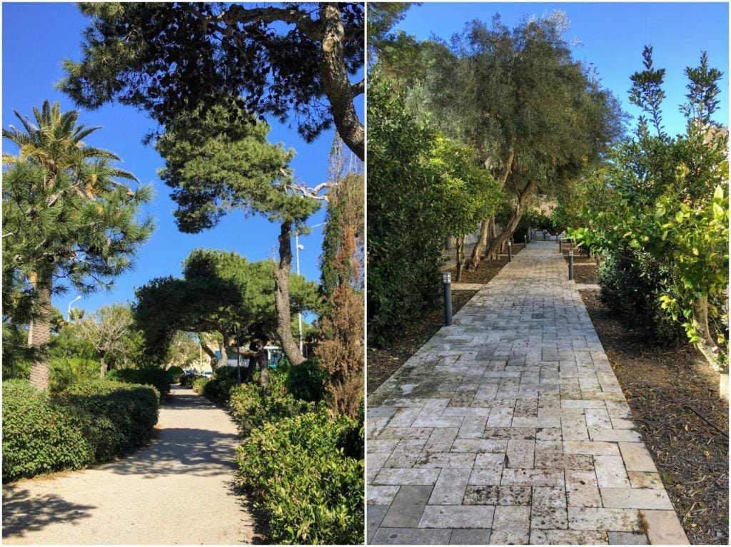 Mdina na Malcie- Ogrody Howarda