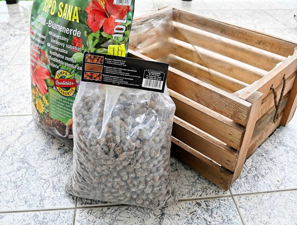 Sadzenie roślin cebulowych do pojemników.