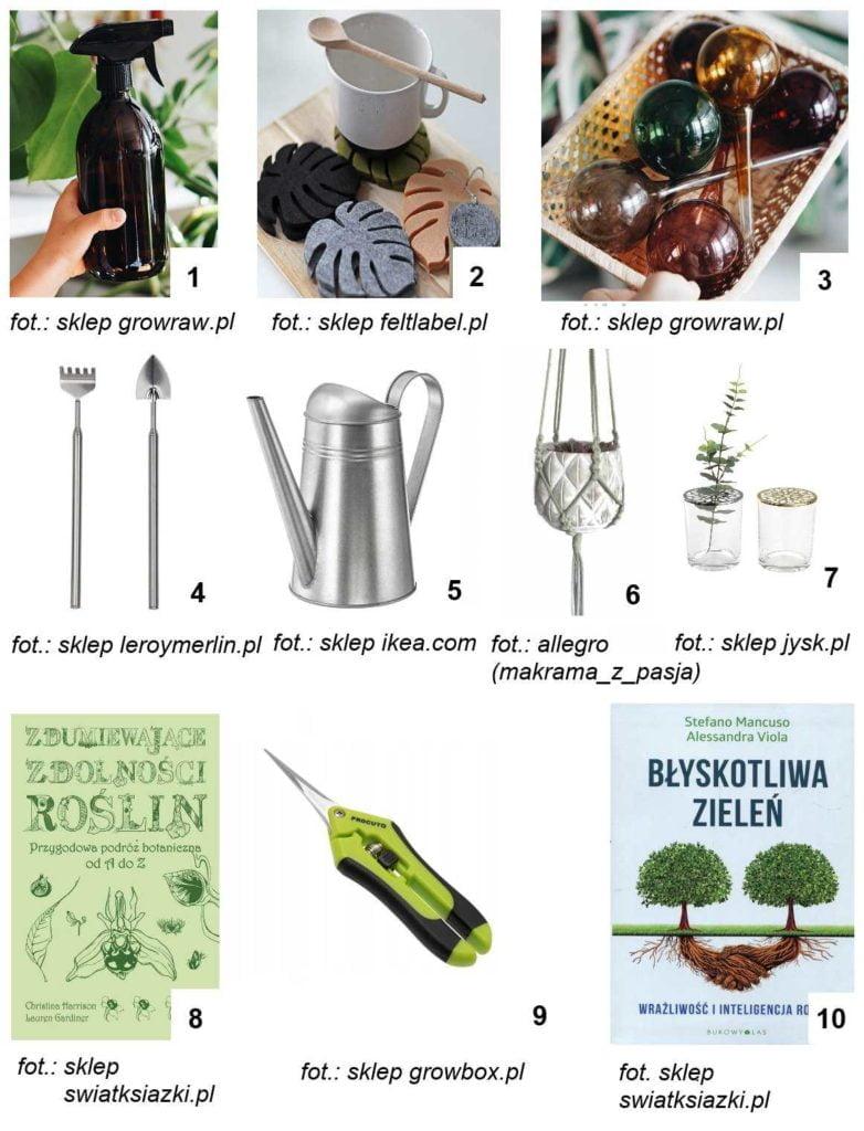 10 pomysłów na prezent dla miłośnika roślin. Zraszacz, filcowe podkładki pod kubki, kule samonawadniające, zestaw narzędzi do wykonania lasu w słoiku, metalowa konewka, wiszący sznurkowy kwietnik, wazon, sekator i książki o tematyce roślinnej.