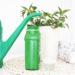 5 podstawowych zasad nawożenia roślin pokojowych